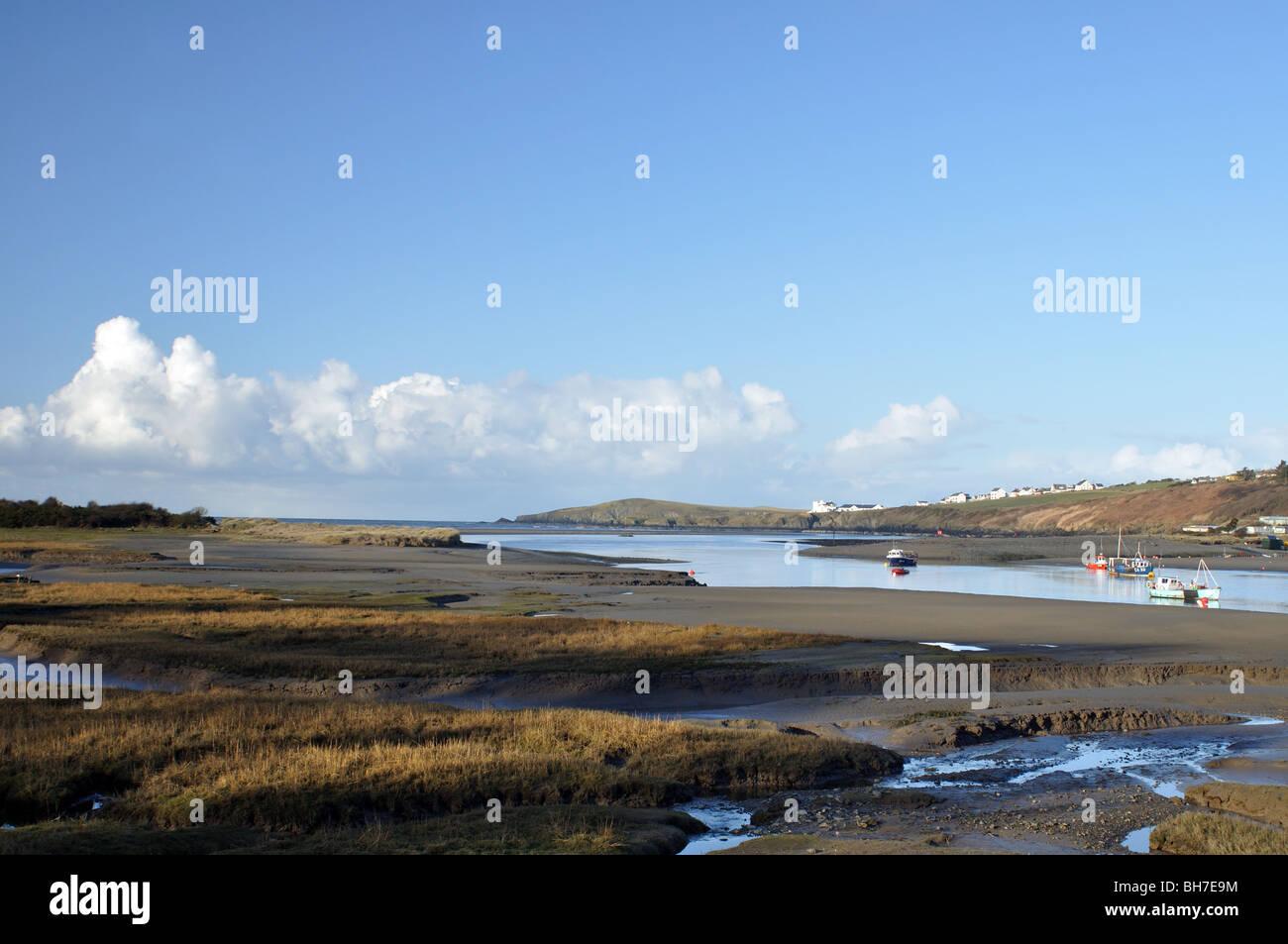 View of Cardigan Island across River Teifi estuary, St Dogmaels, Pembrokeshire, Wales, United Kingdom Stock Photo