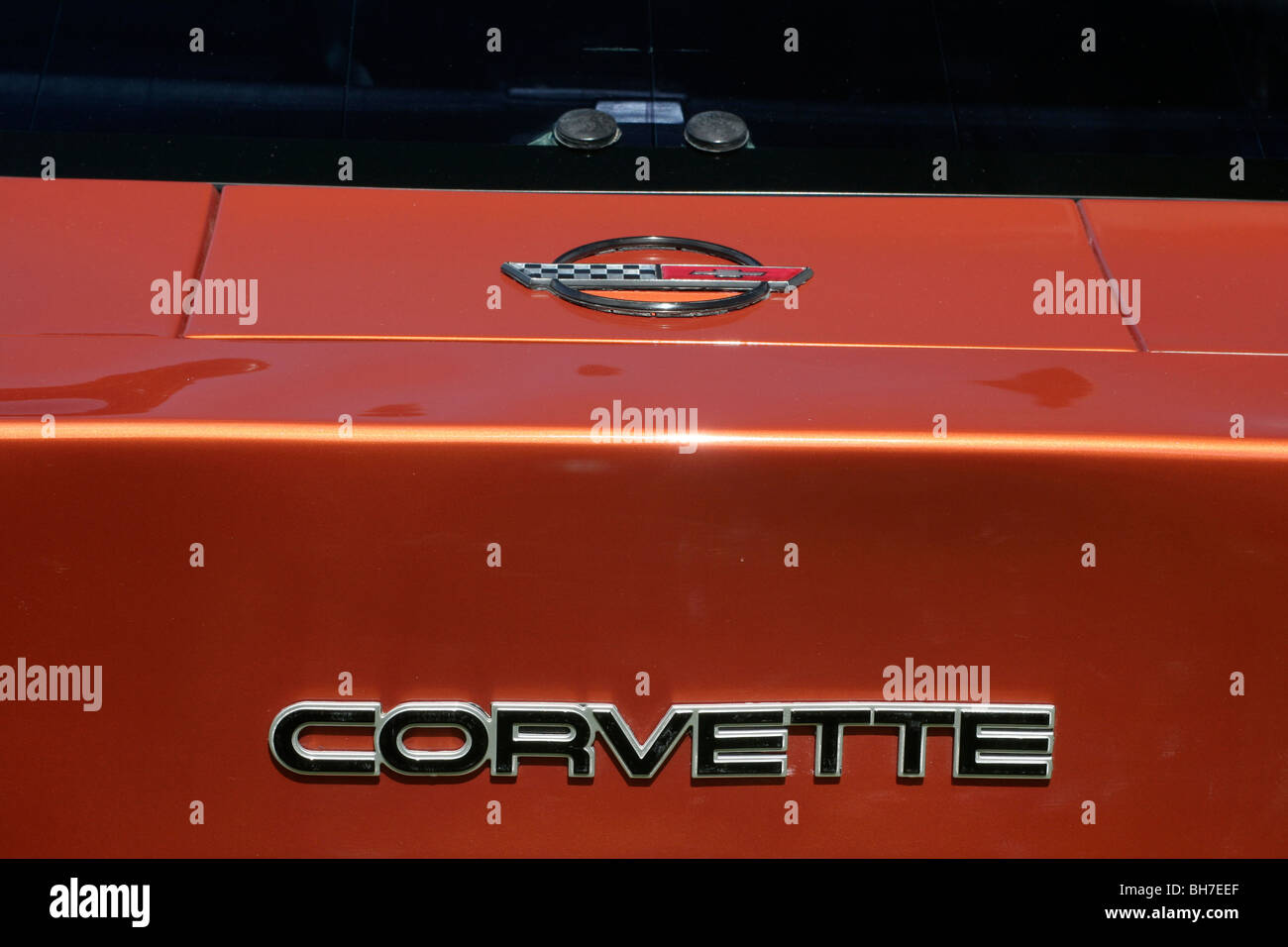 Chevrolet Corvette nameplate and logo Stock Photo