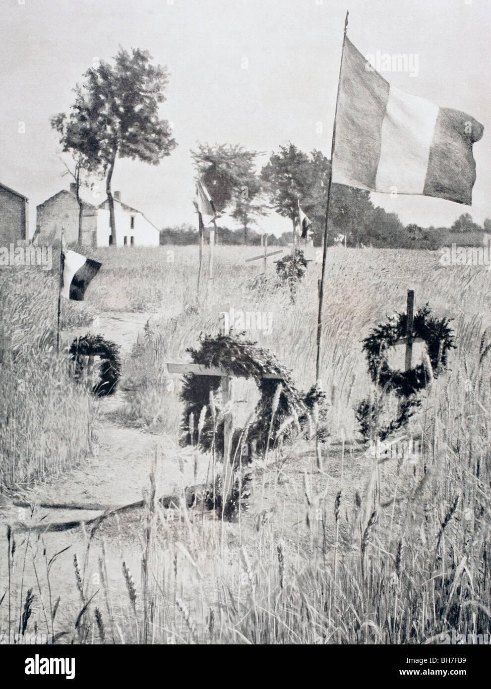 Graves in the wheatfields on the Western Front during the First World War. - Stock Image