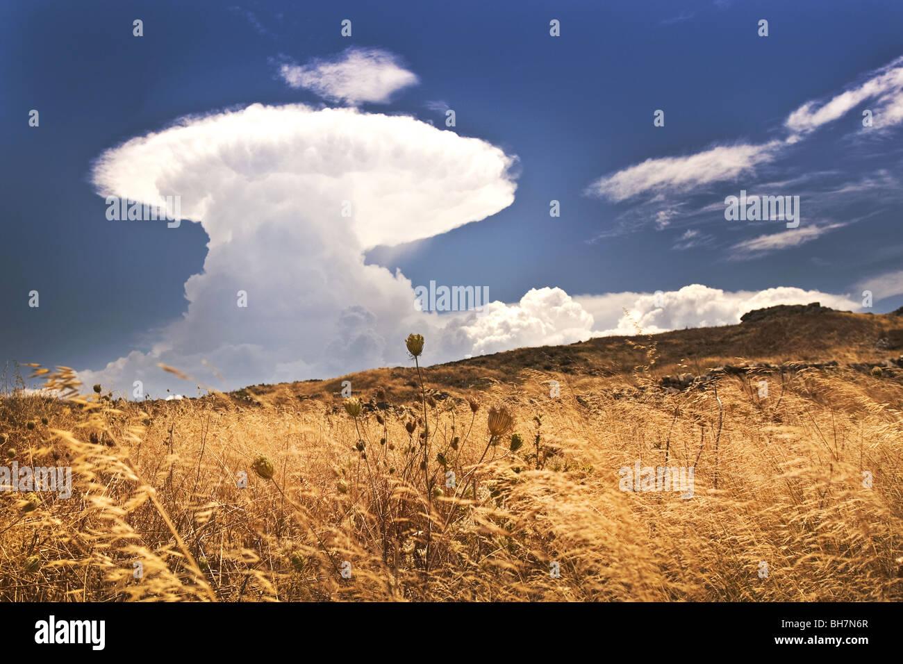 Pyrocumulus nuclear-like mushroom cloud, Delos, Greece. - Stock Image