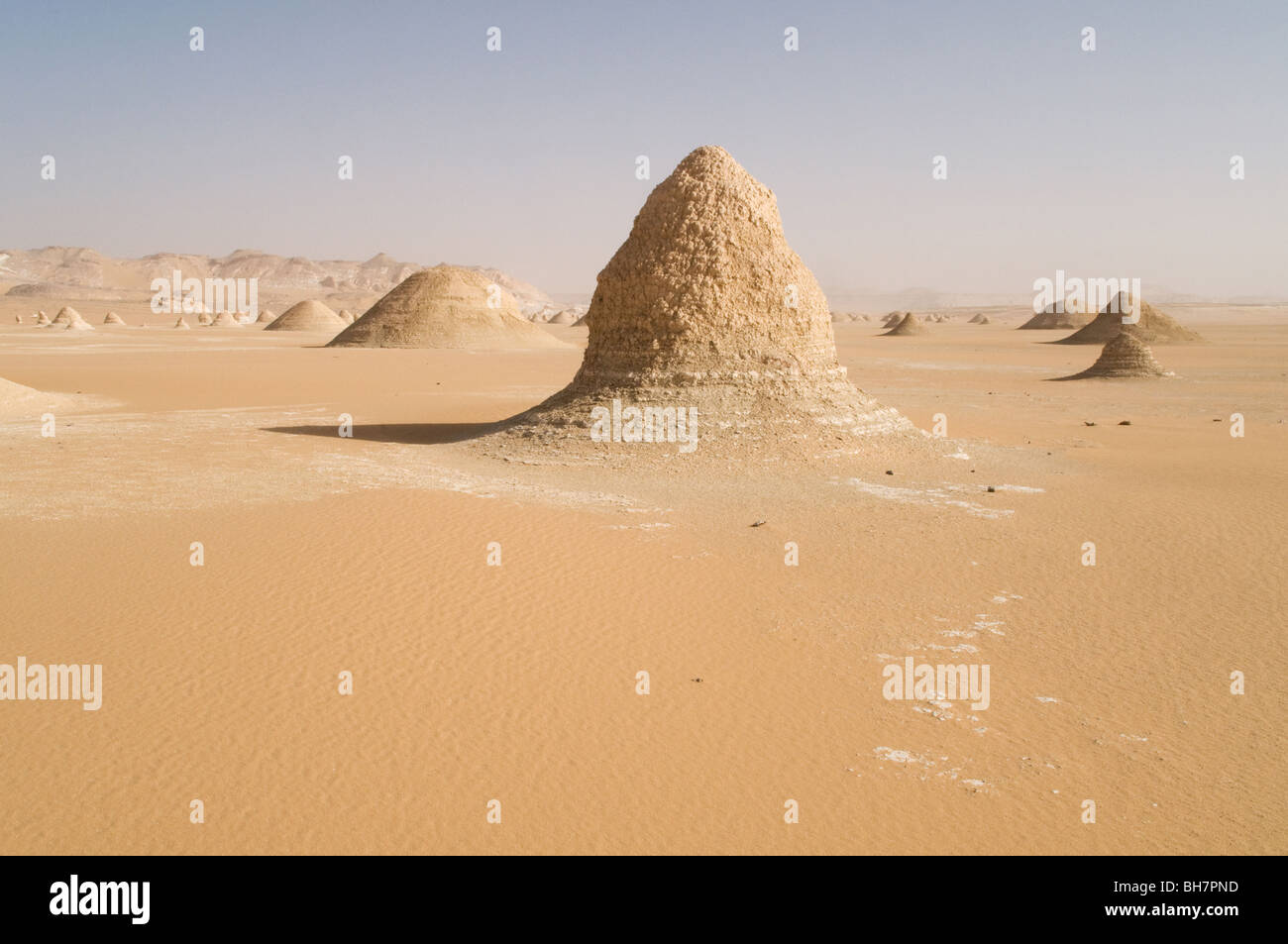 Eroded yardang mounds located in the Western Desert region of the Egyptian Sahara, between Ain Dalla and Farafra Stock Photo