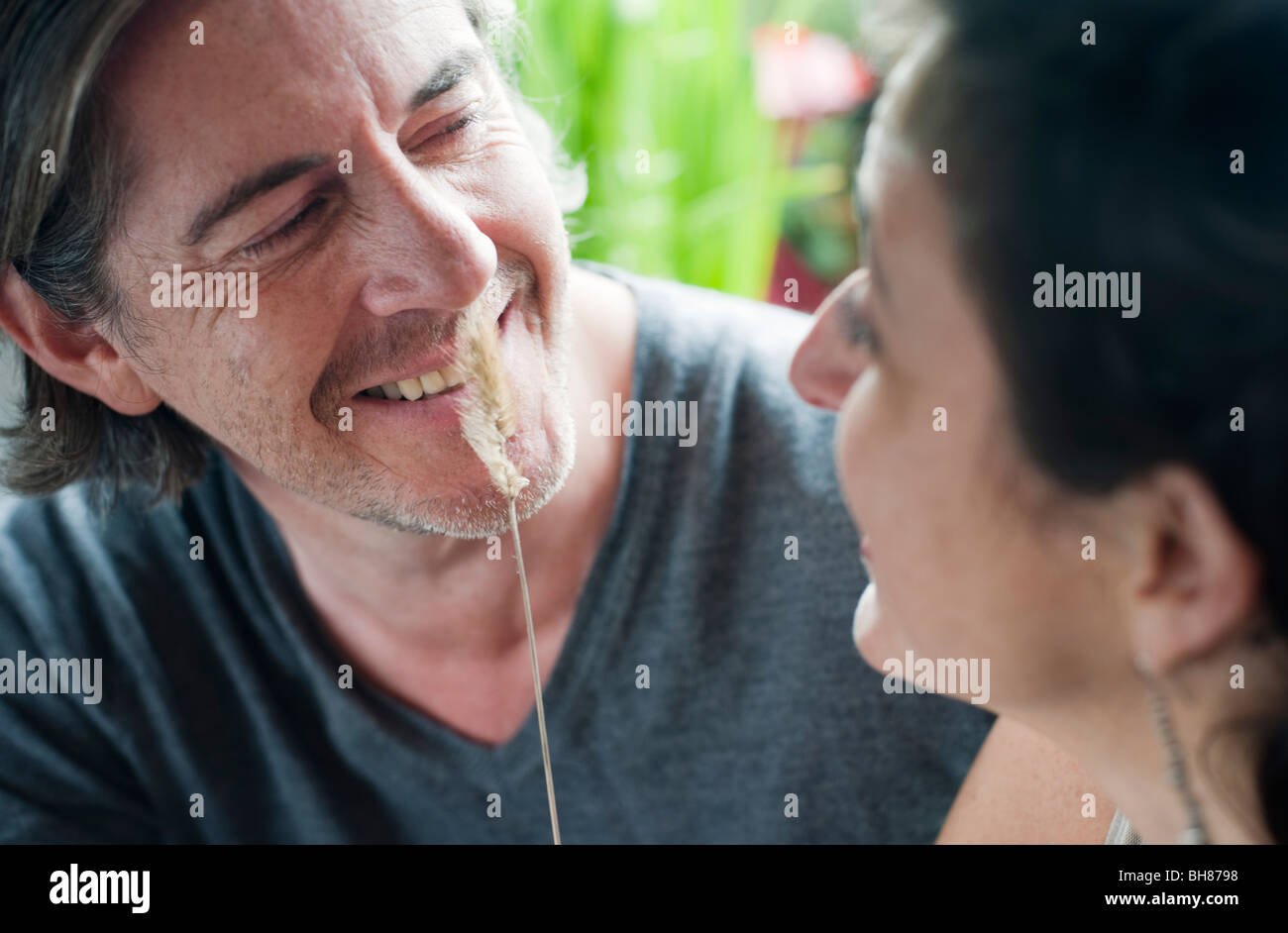 man & woman playing with grass stalk - Stock Image