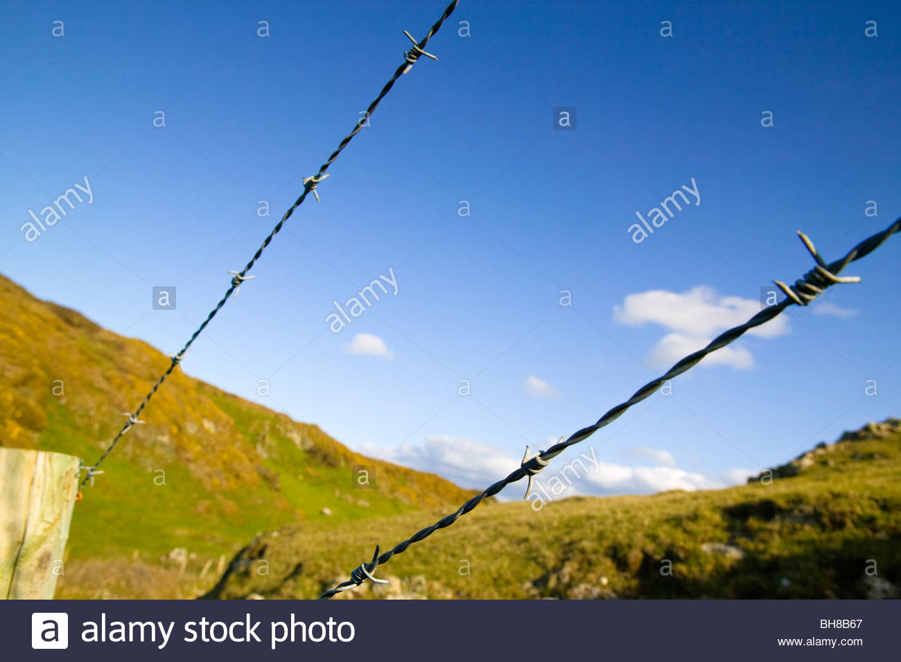 Fencing rights of way Pembrokeshire Wales - Stock Image