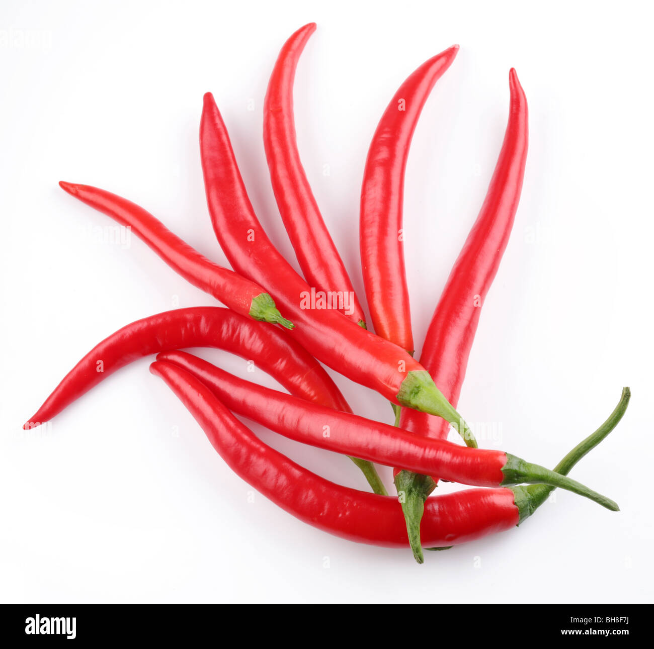Pods spicy red chilli peppers on white background - Stock Image