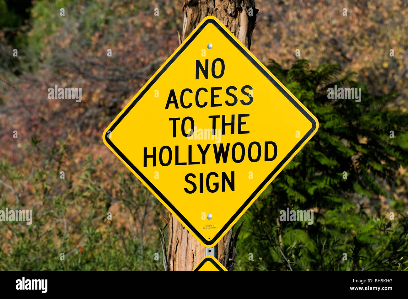 Hollywood street sign, Los Angeles, California, USA - Stock Image