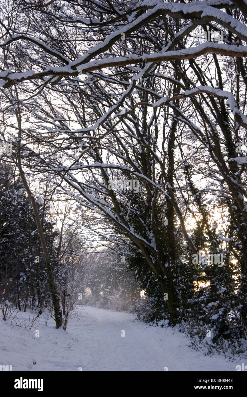 Blowing snow on The Ridgeway Path in the Chilterns near Aston Rowan, Oxfordshire, UK - Stock Image