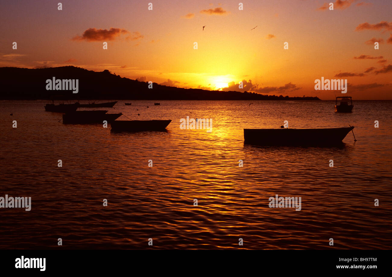 Boats at Sunset, Grenada, West Indies Stock Photo