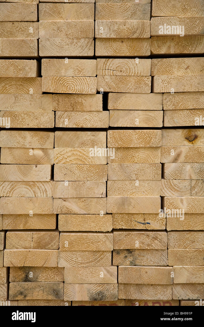 End grain pine timber pile - Stock Image