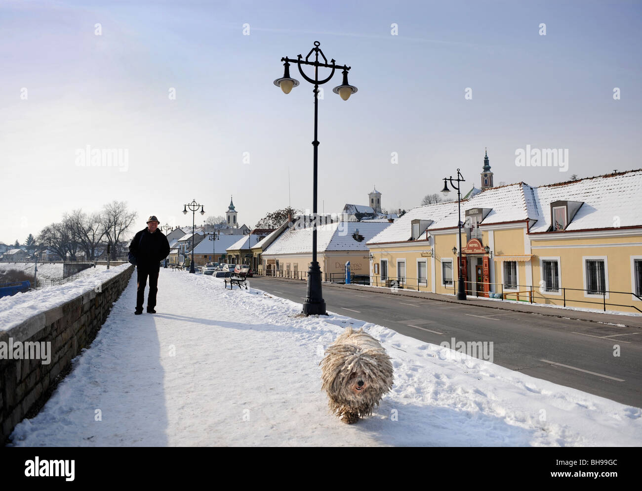Winter scene in Szentendre Hungary with a man walking a traditional Hungarian Puli Sheepdog Stock Photo