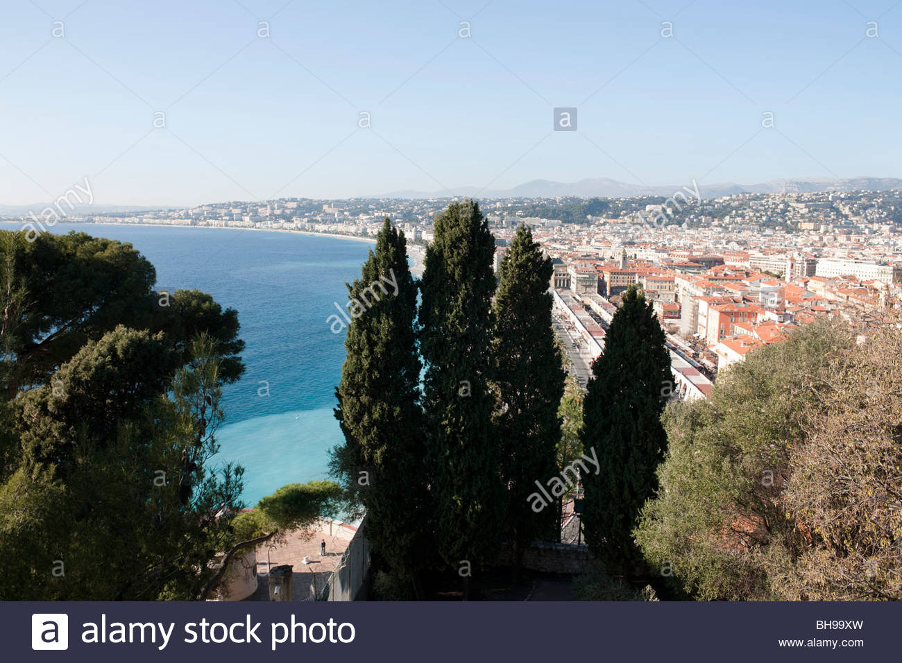 Cypress trees, The Marche aux Fleurs, Baie des Anges, Nice from the Parc de Colline du Chateau, sun blue sky - Stock Image