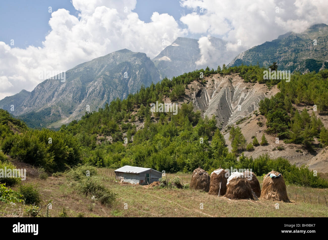 Haystacks in the Vjoses valley with the Nemercke mountains in the background, near Permet in southern Albania - Stock Image