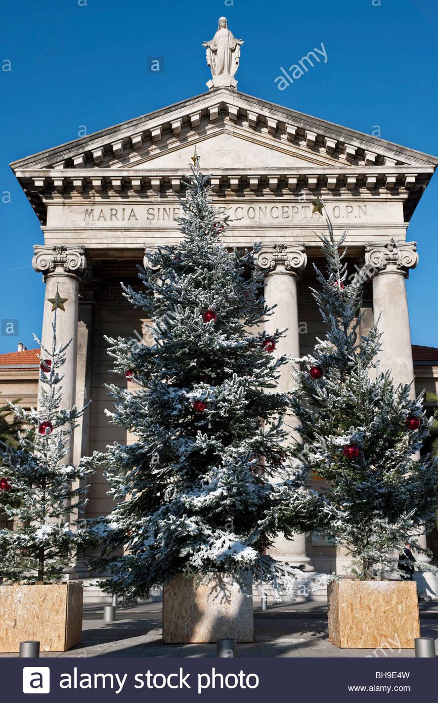 Christmas trees, Place de I\'Ile de Beaute, Port of Nice, Notre Dame ...
