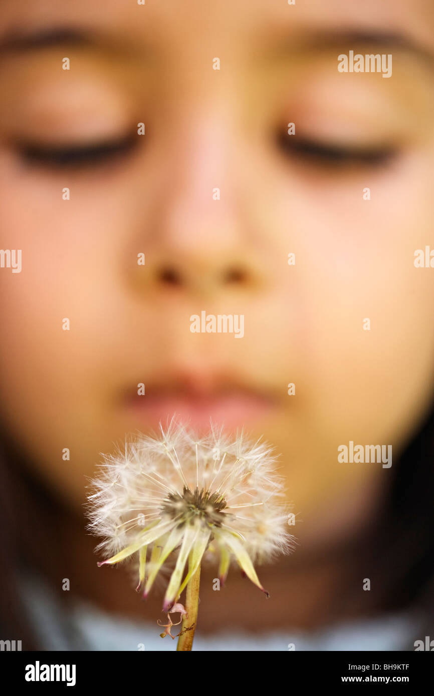 girl blows dandelion - Stock Image