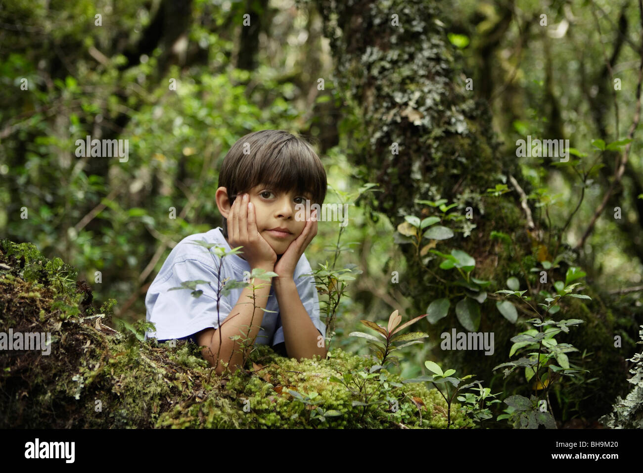 Boy in woods - Stock Image