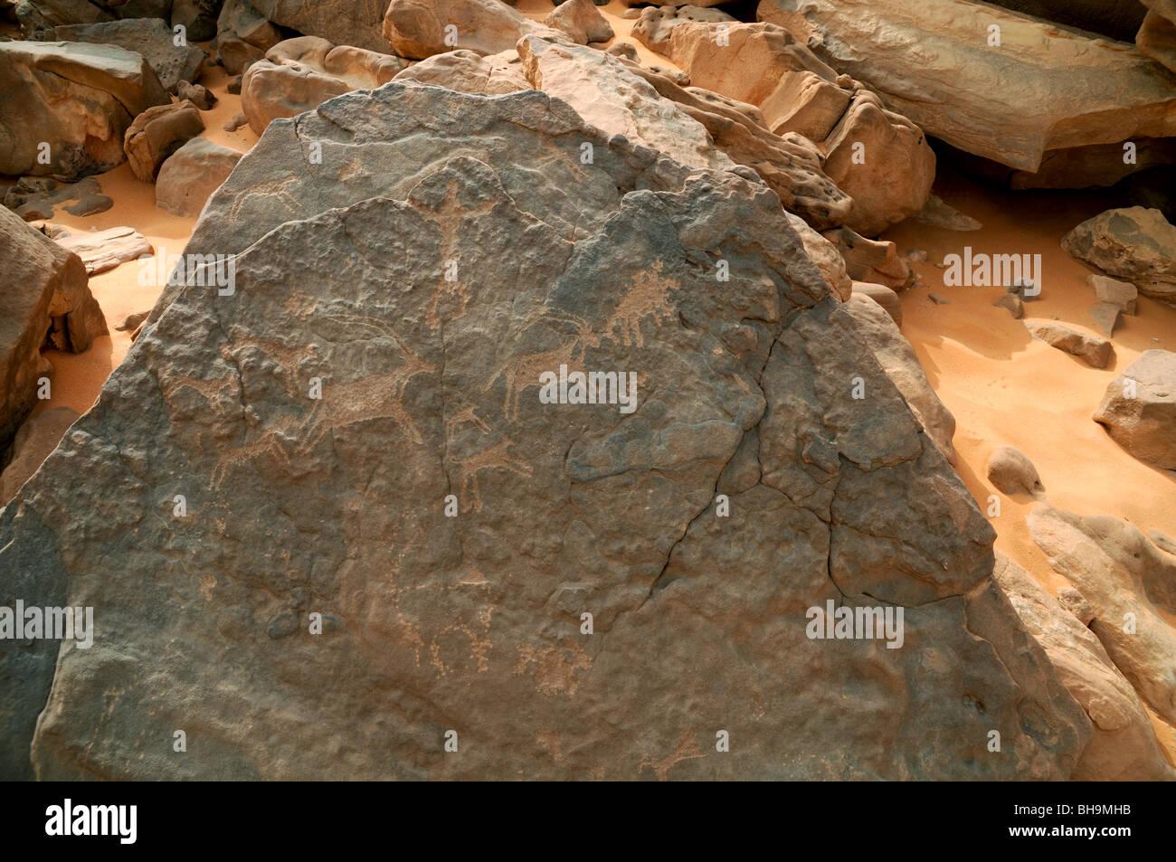 Neolithic rock art depictions of wildlife at Wadi Hamra in the Gilf Kebir region of the Western Desert of Egypt, Stock Photo