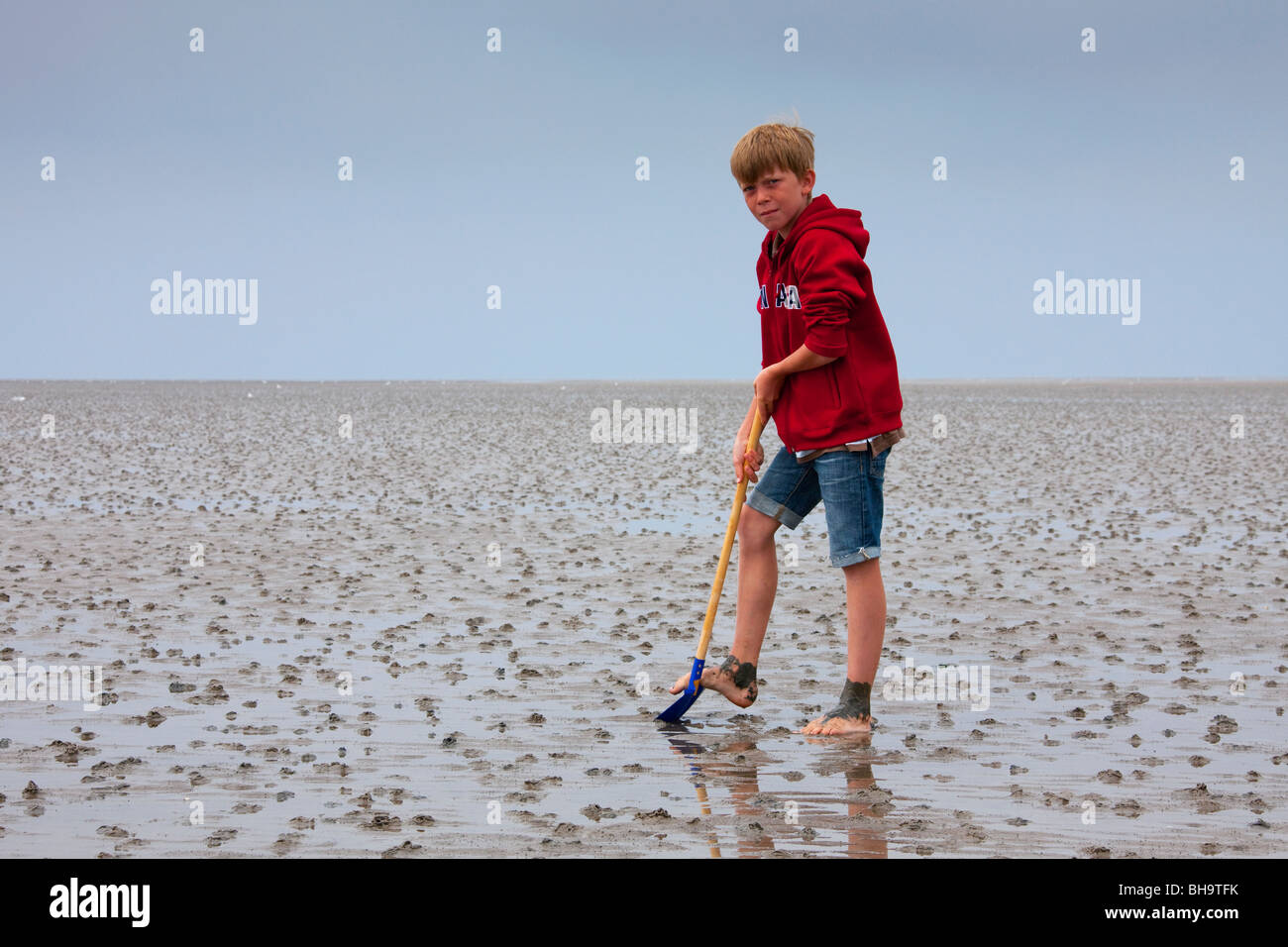 Boy With Spade Looking For Worms On The Beach At The Wadden Sea
