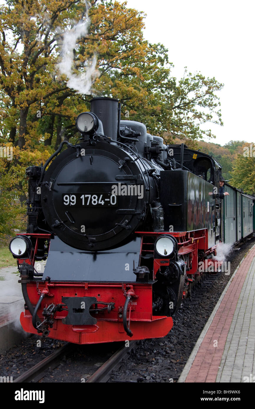 The steam engine Rasender Roland, island of Ruegen, Mecklenburg-Western Pomerania, Germany - Stock Image