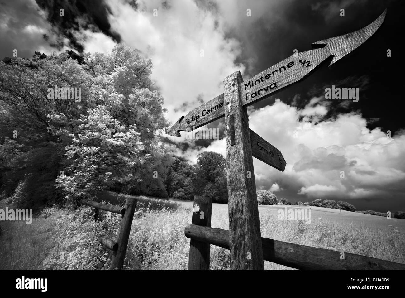 Signpost on a country lane, nr Up Cerne, Dorset, England, UK - Stock Image