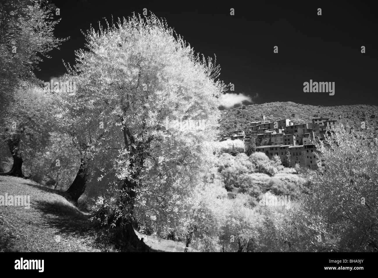 the hill top village of Peillon, Alpes Maritime, Provence, France - Stock Image