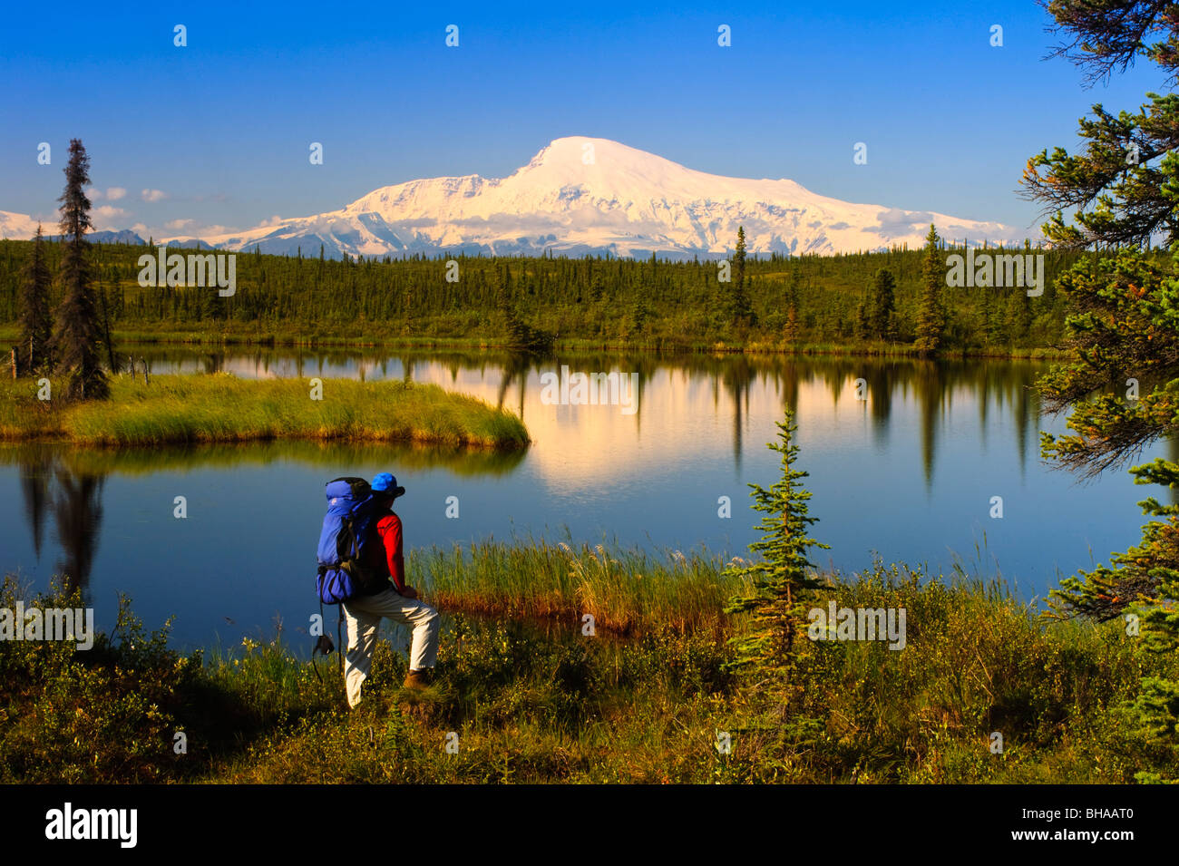 Male backpacker stops to enjoy the view of Mount Sanford, Wrangell Saint Elias National Park, Southcentral Alaska, - Stock Image