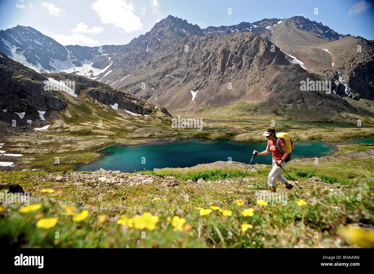 Hiker overlooks Williwaw Lakes, Chugach State Park, near Anchorage, Southcentral Alaska, Summer - Stock Image
