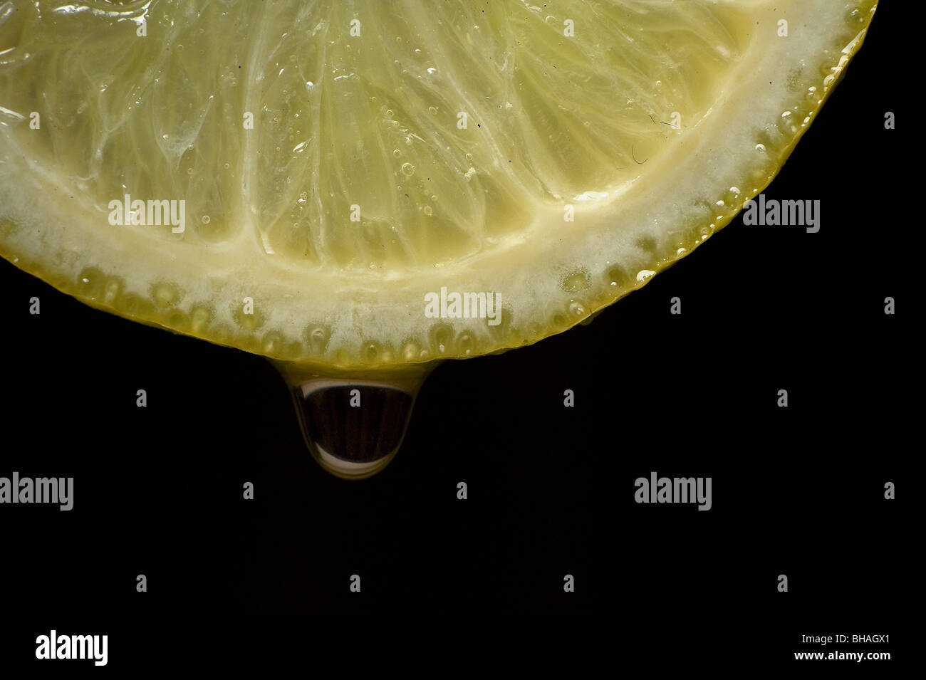 Slice of lime with water droplet - Stock Image
