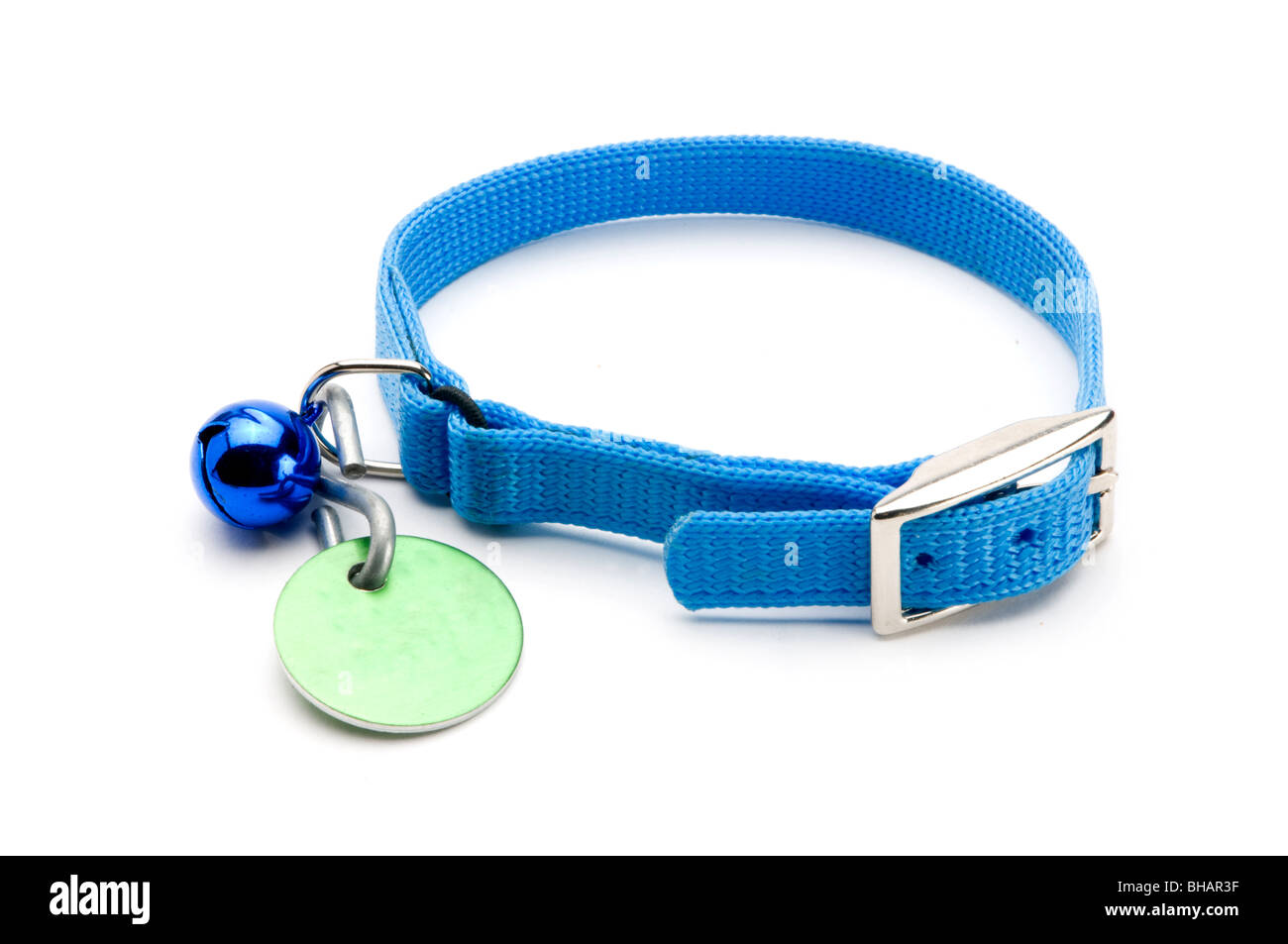 PET COLLAR ON WHITE Stock Photo