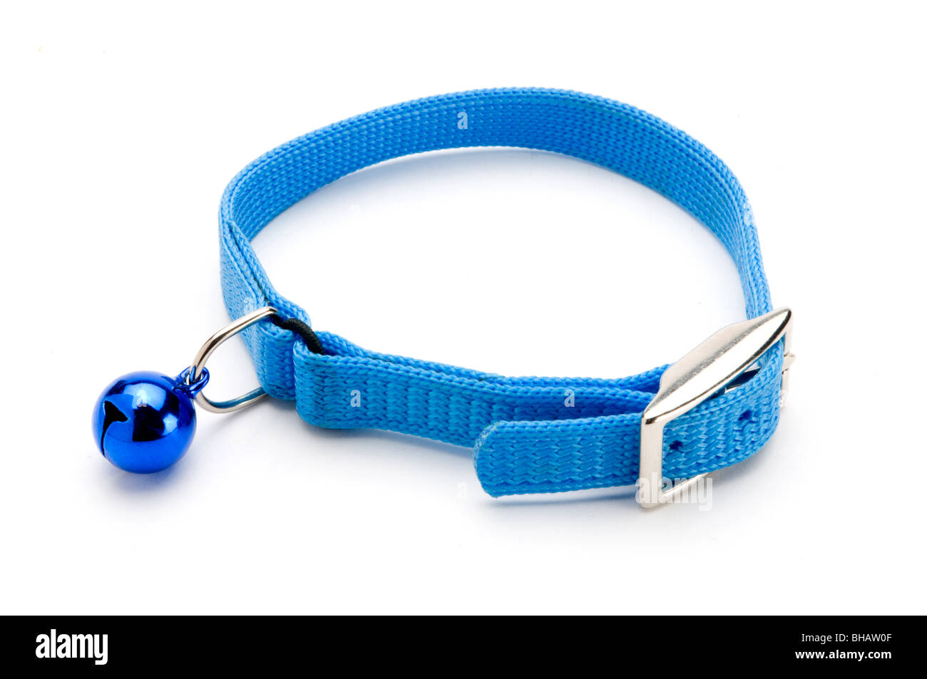 PET COLLAR ON WHITE - Stock Image