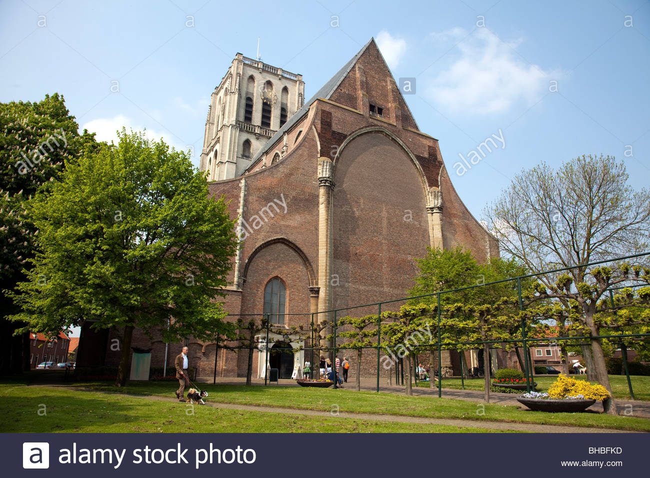 Benelux bomen boom Brielle church dutch Europe Holland kerk kerktoren Netherlands Sint Catharijnekerk St stad tower - Stock Image