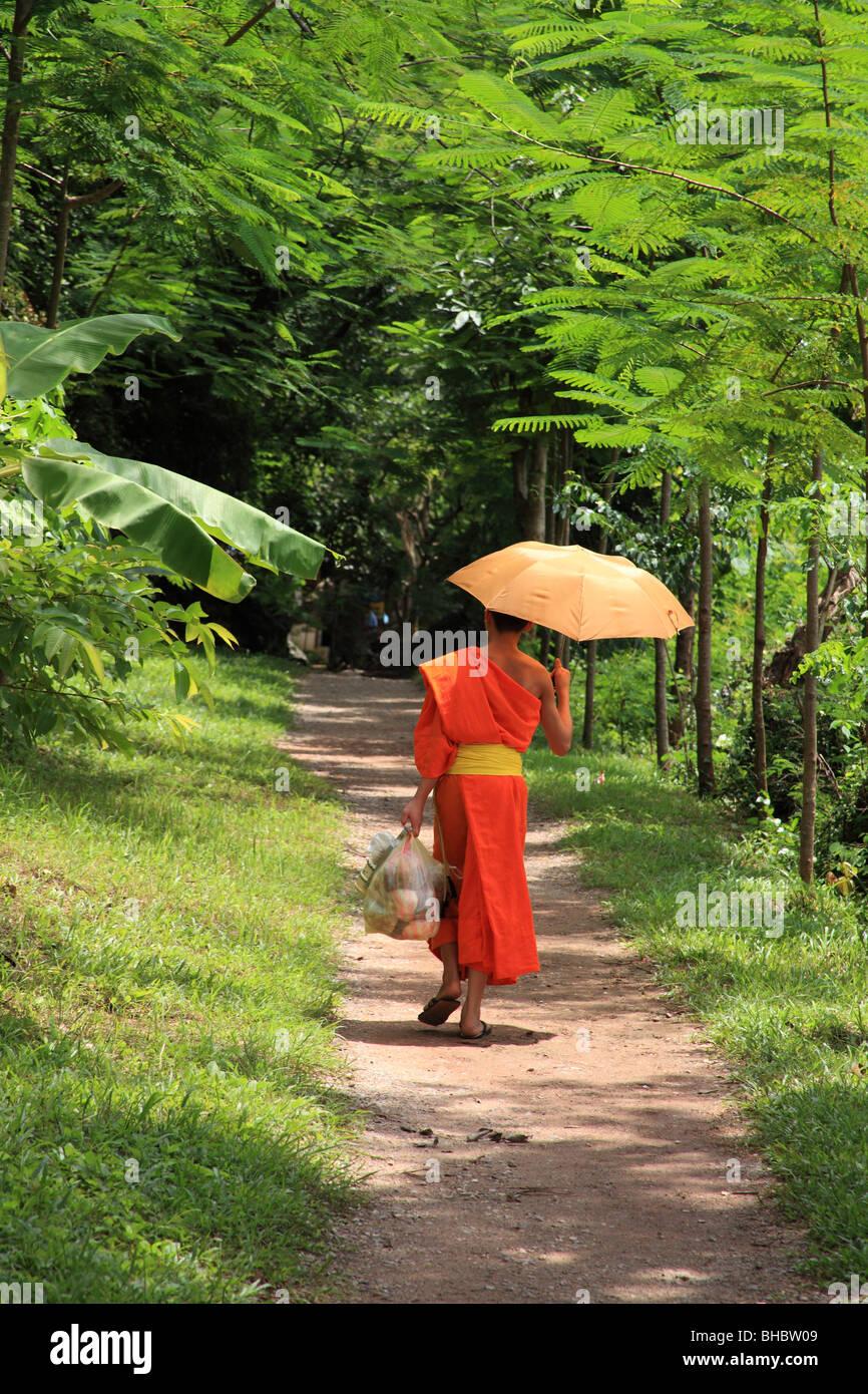Young monk in Luang Prabang, Laos - Stock Image