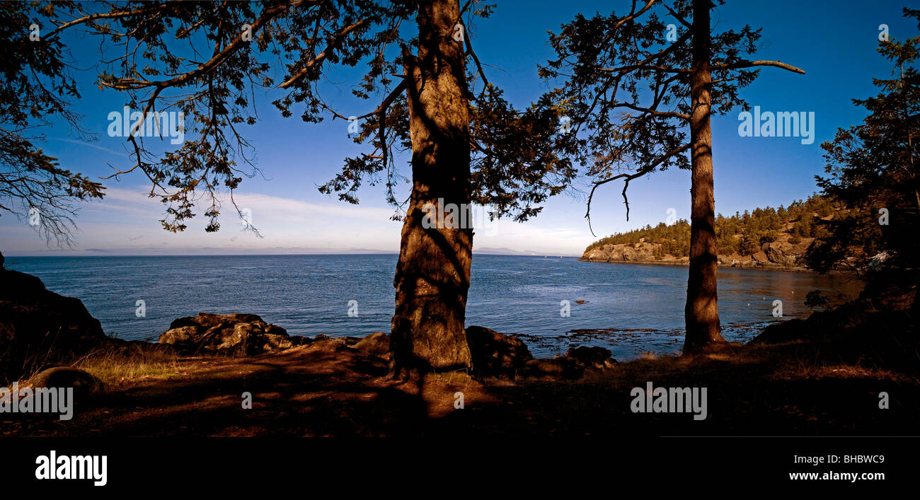 A panoramic view of the Haro Strait as seen from San Juan island on a summers afternoon. In the shade of the Douglas - Stock Image