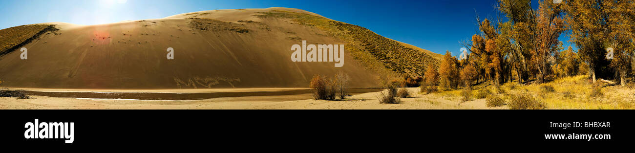 The Grate Sand Dunes National Park and Preserve in Colorado, USA. This is a long skinny panoramic photograph of - Stock Image