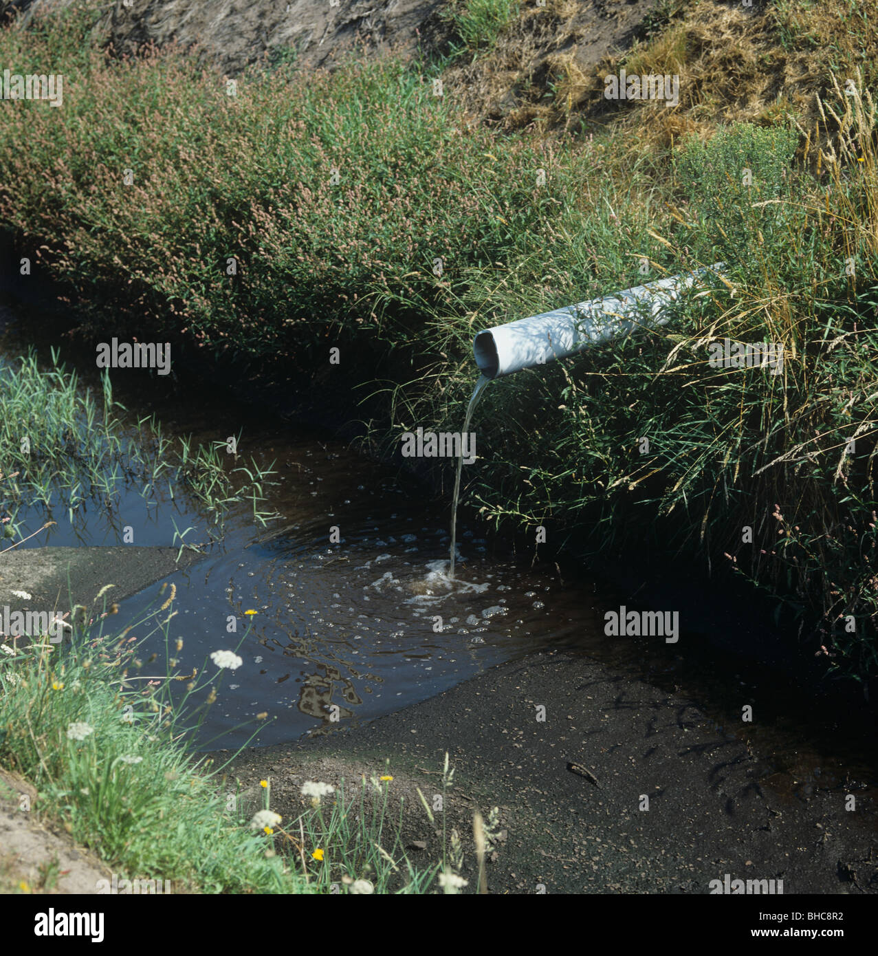 Drainage outlet into water course from farmland with irrigation, a source of water contamination - Stock Image