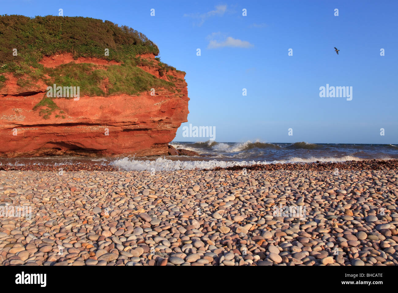 Otterhead, Budleigh Salterton, South Devon, England. Shot with high resolution camera. - Stock Image