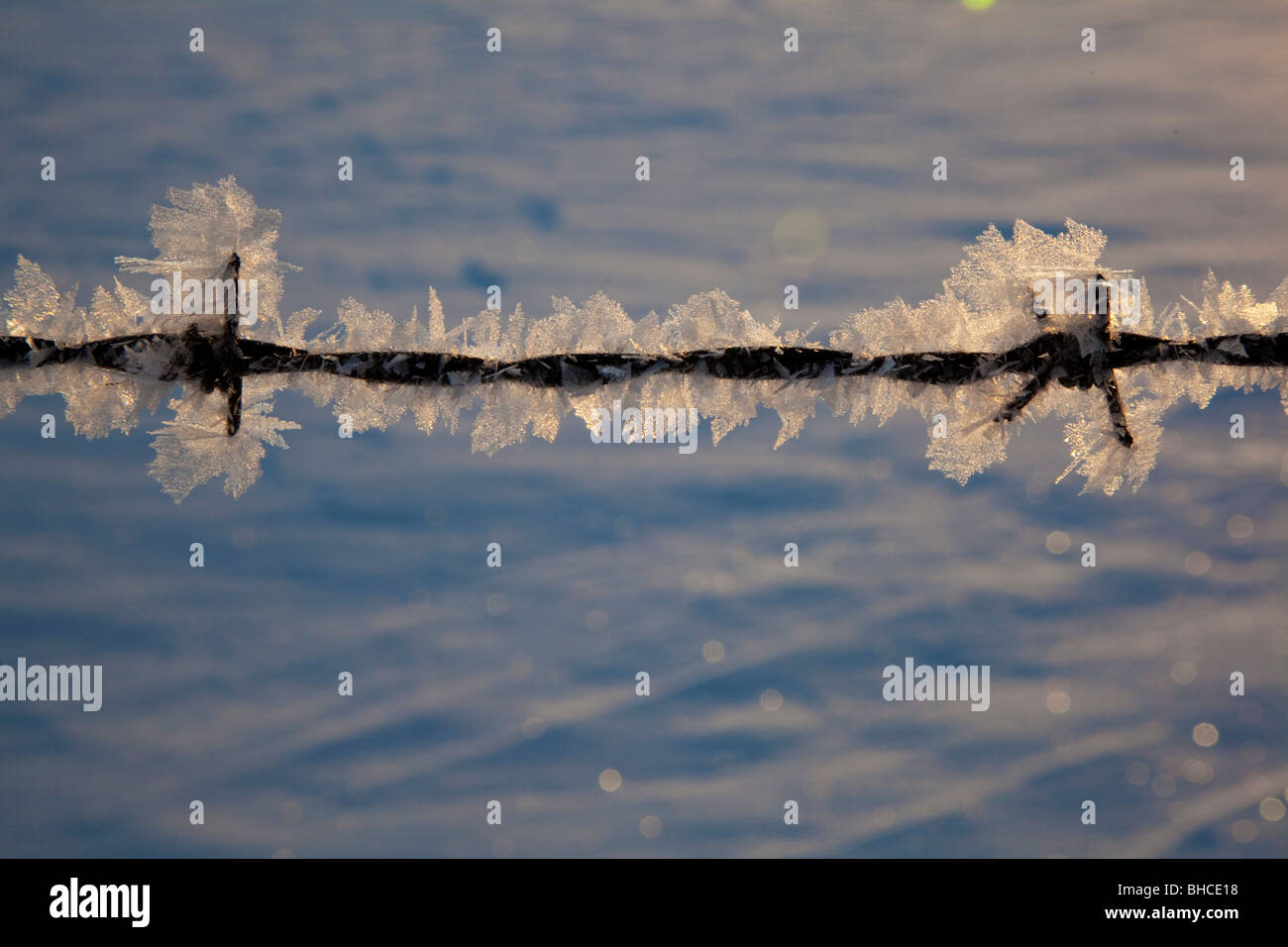 New Palestine, Indiana - Frost on a barbed wire fence. - Stock Image