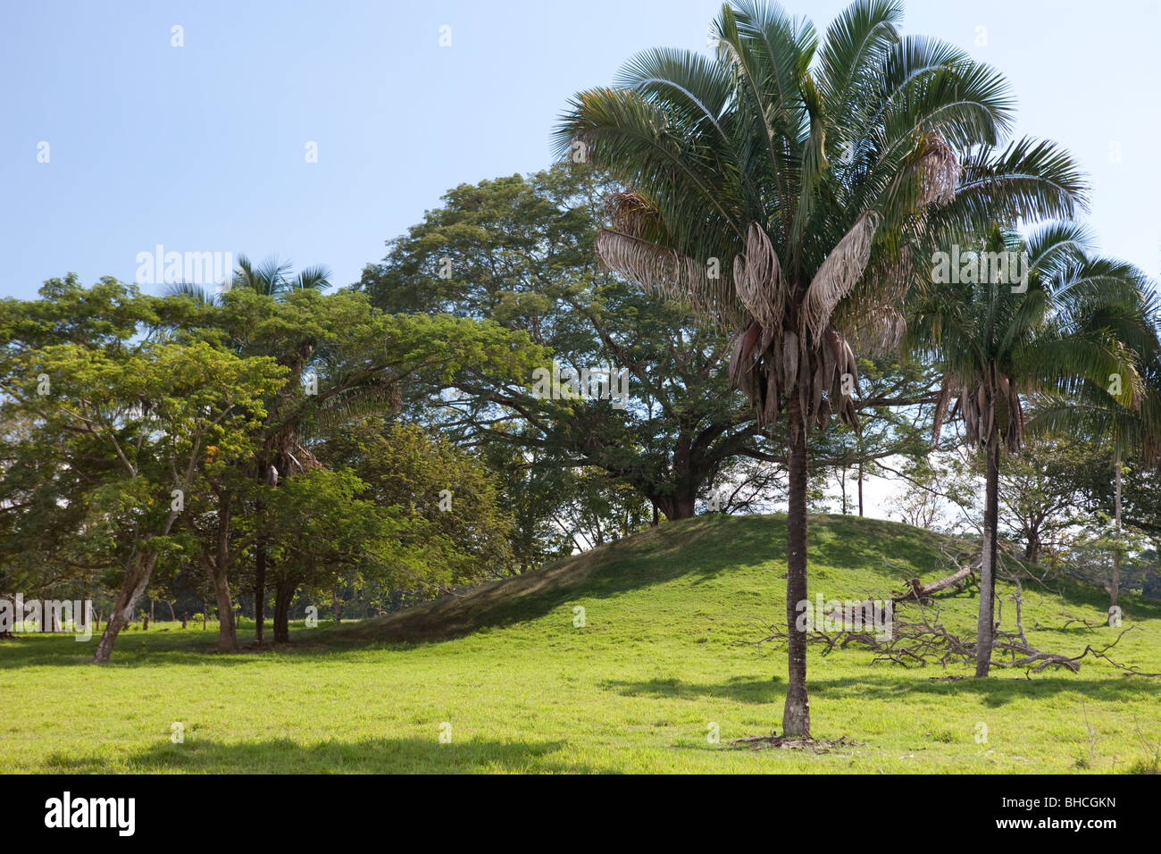 Inland scenery, Costa Rica - Stock Image
