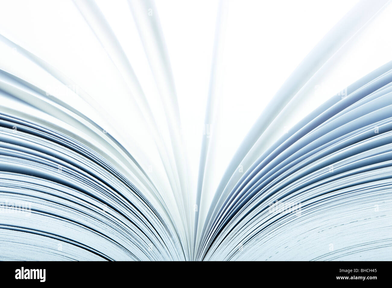 Macro of a open book with pages turning- selective focus - Stock Image
