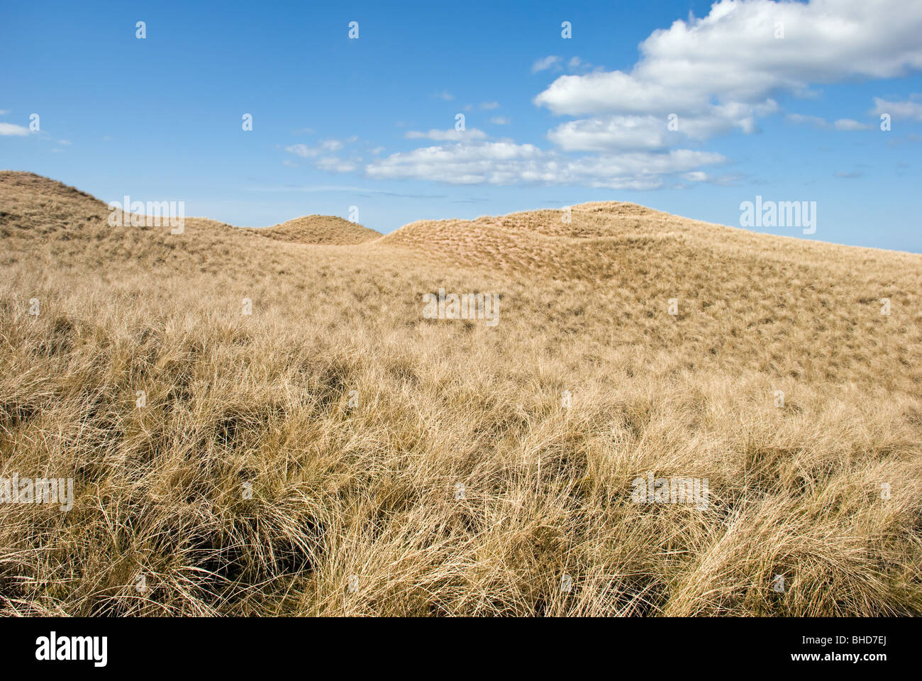 Sand dunes of Sandwood Bay Scotland taken on sunny day with blue sky - Stock Image