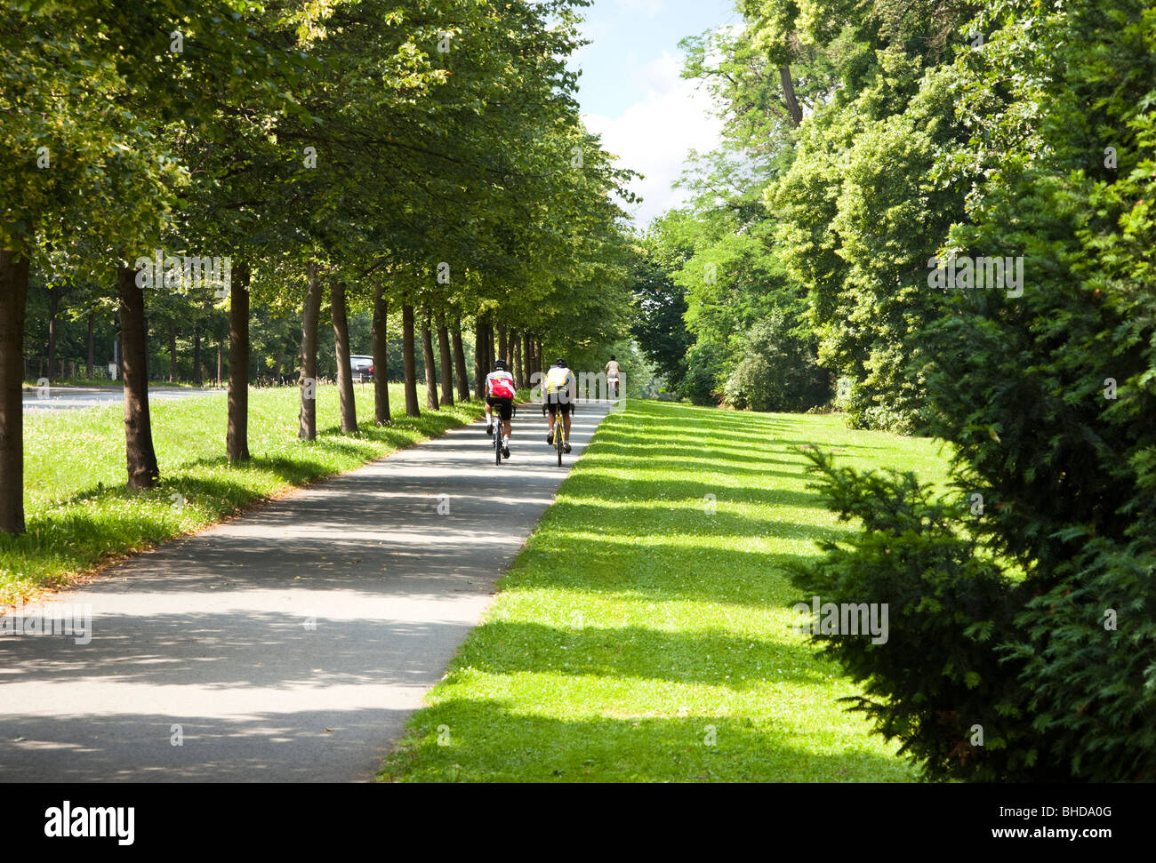 Cyclists riding on a cycle path on the edge of the city park in Weimar, Germany, Europe - Stock Image
