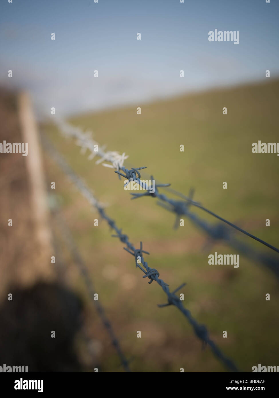 Barbed wire fence deviding farm land and access land. - Stock Image