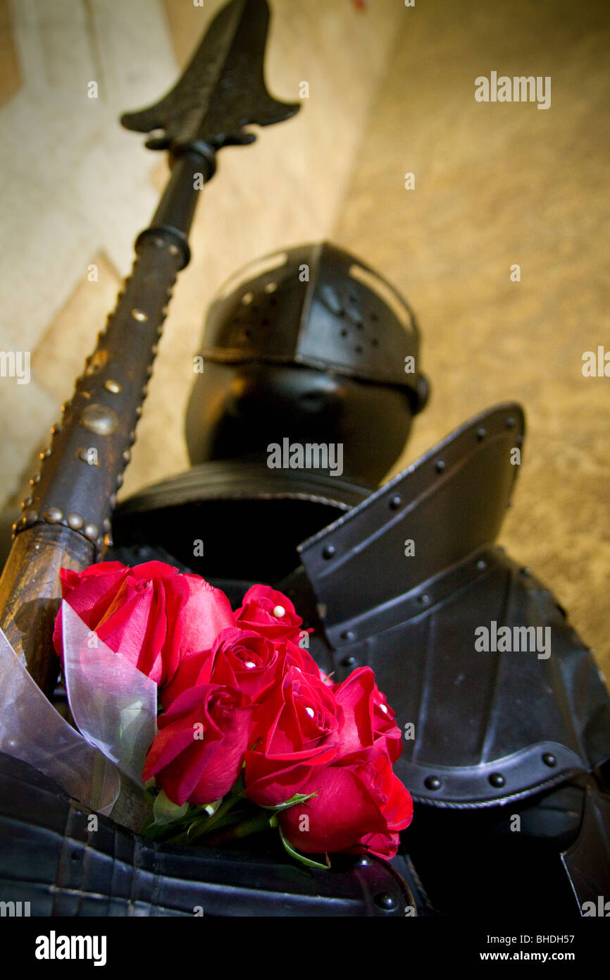 Knight in shining armor holding roses - Stock Image
