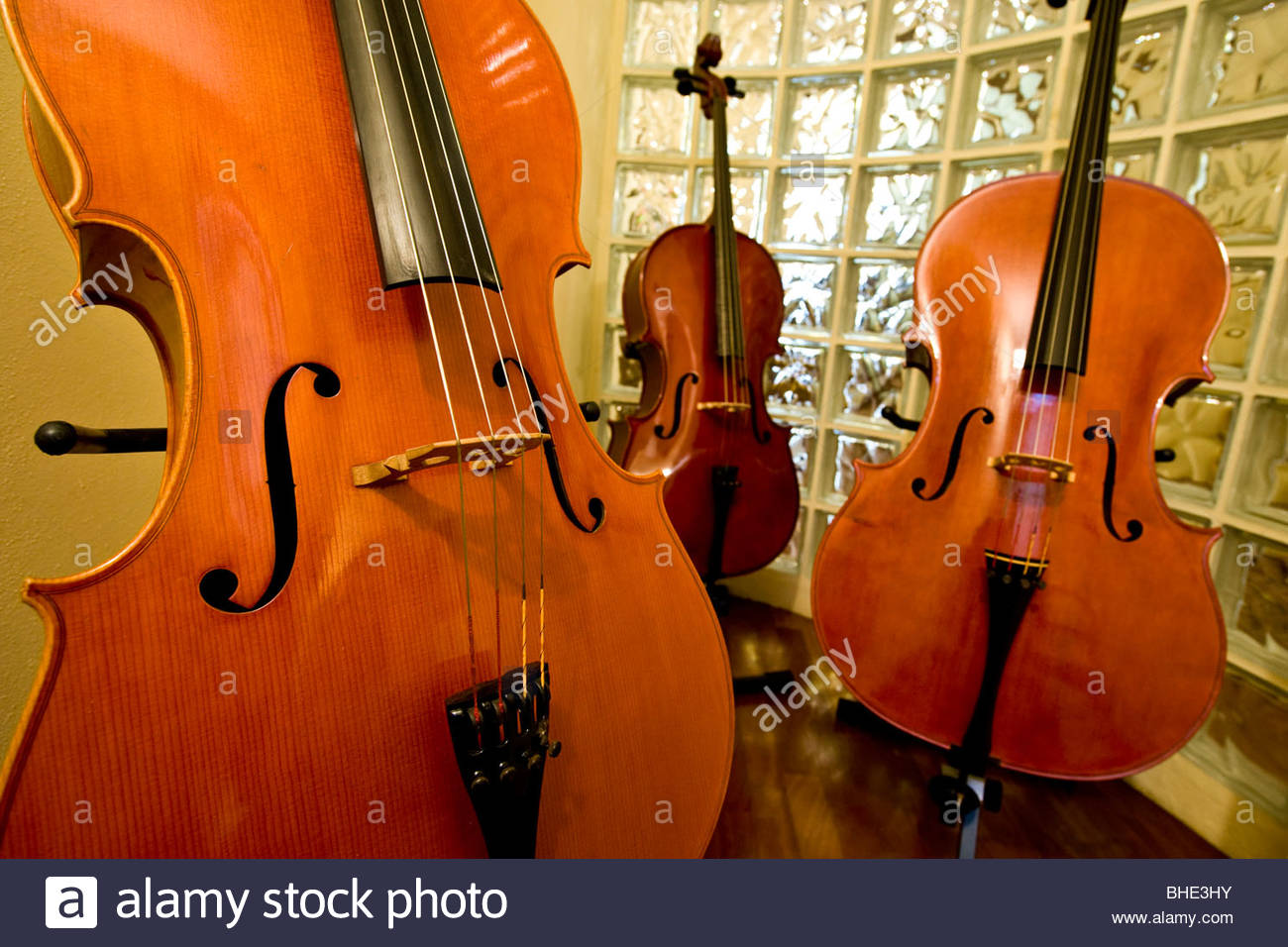 carlson and neumann, viola, cremona, lombardia, italy - Stock Image