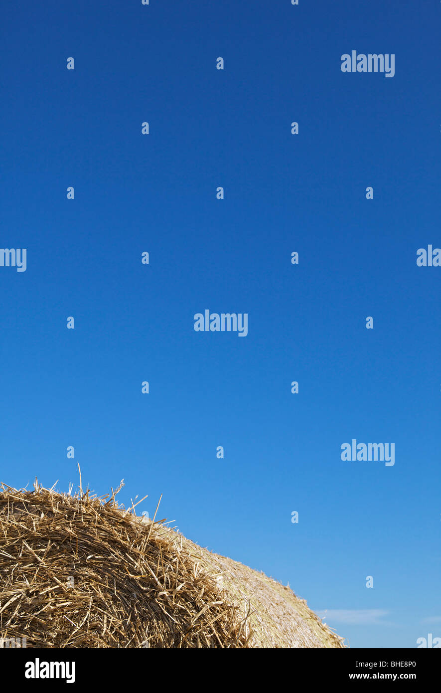 Top part of round straw bale against strong blue sky - Stock Image