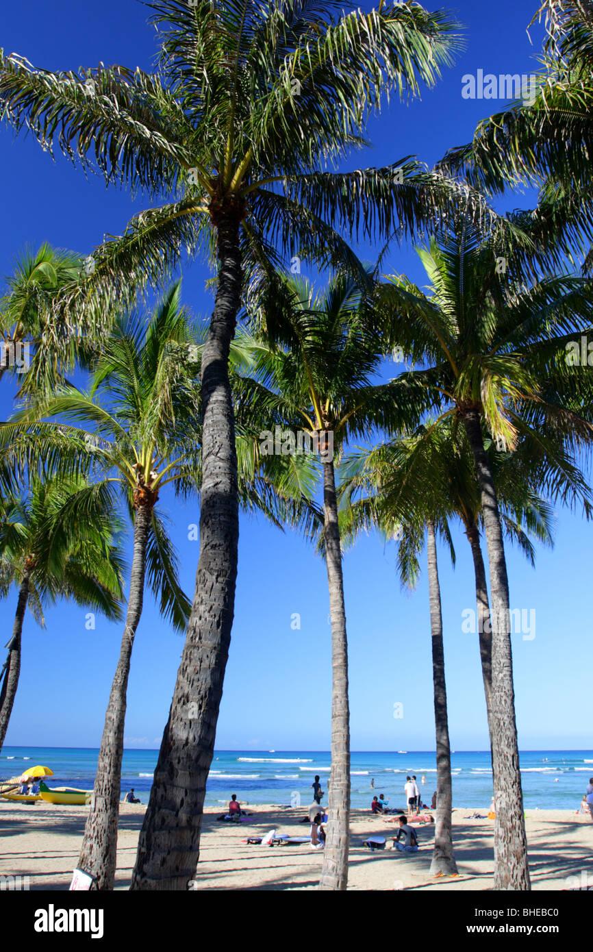 Stock image of Waikiki Beach, Honolulu, Oahu, Hawaii - Stock Image
