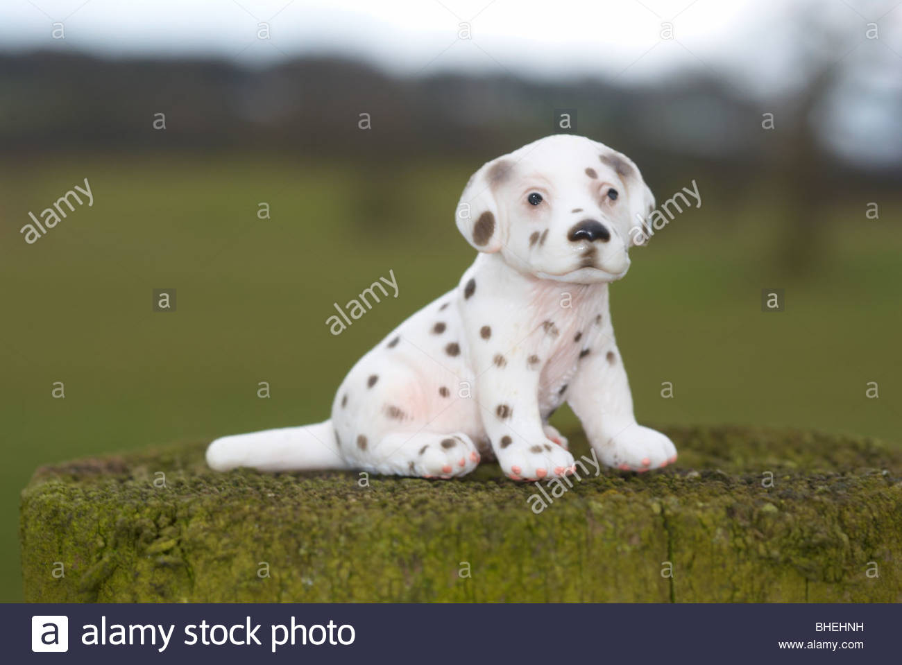 Plastic Dalmatian puppy photographed outdoors. - Stock Image