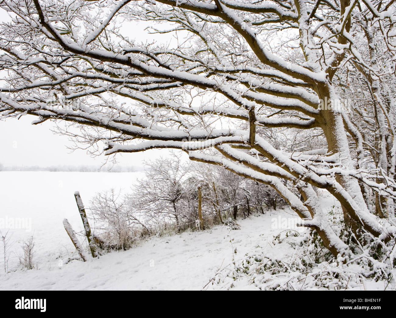 Winter Scenes Uk Stock Photos & Winter Scenes Uk Stock