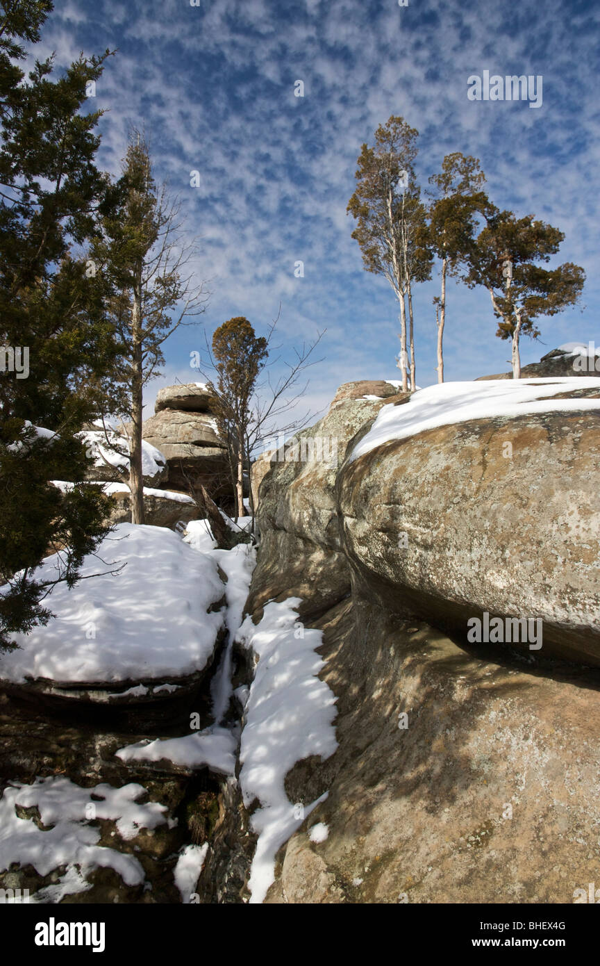 Juniper trees and sandstone outcrop. Garden of the Gods Wilderness, Illinois. - Stock Image