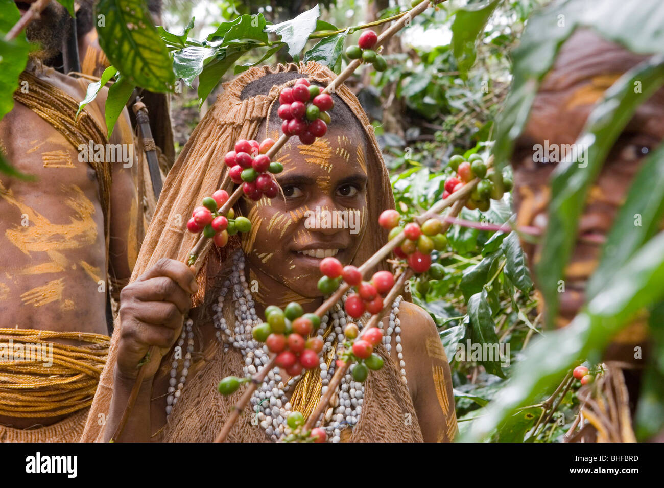 Girl working on coffee plantation, Langila, Highlands, Papua New Guinea, Oceania - Stock Image