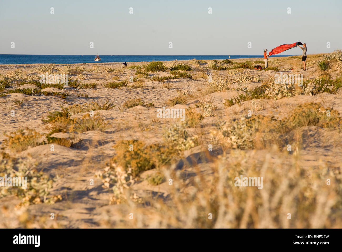 Two person folding up their red tent, Morning light, camping on the beach, beach on the Ilhe de Tavira, Tavira, - Stock Image
