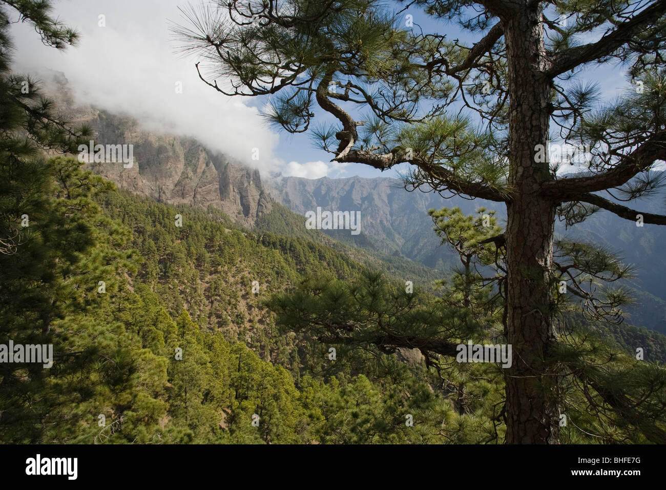 Viewpoint on Los Brecitos (1030m), National ParK, Parque Nacional Caldera de Taburiente, giant crater of an extinct - Stock Image